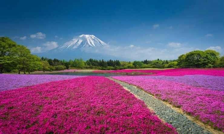 أبرز المعالم الطبيعية في اليابان 5