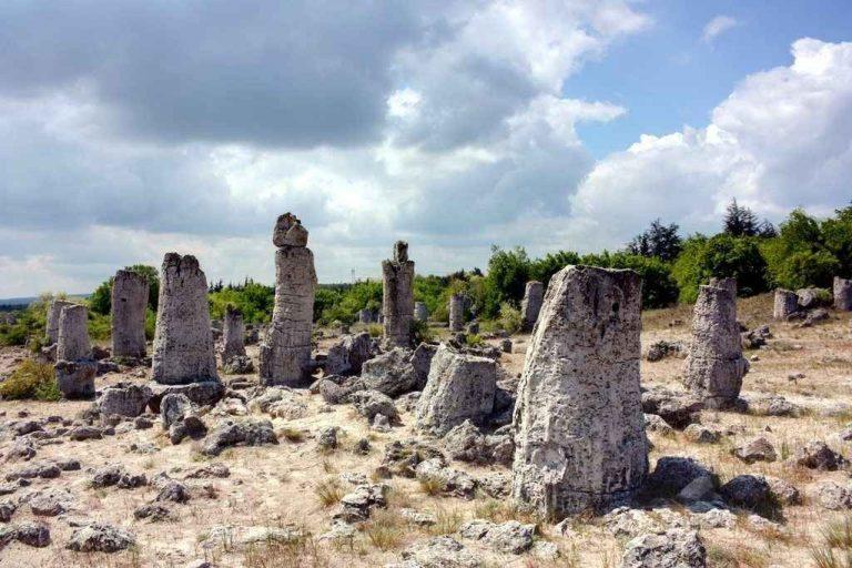 غابة فارنا الحجرية Varna Stone Forest