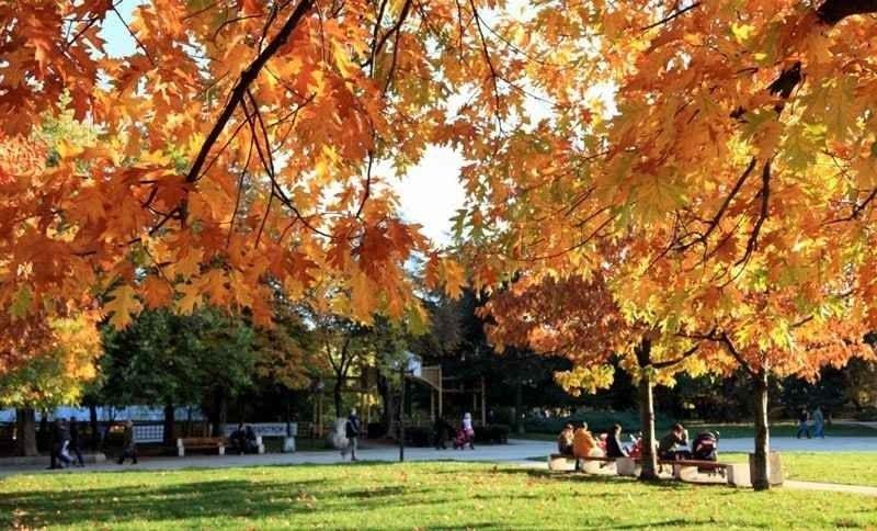 حديقة بوريسوفا جراديناBorisova Gradina Park