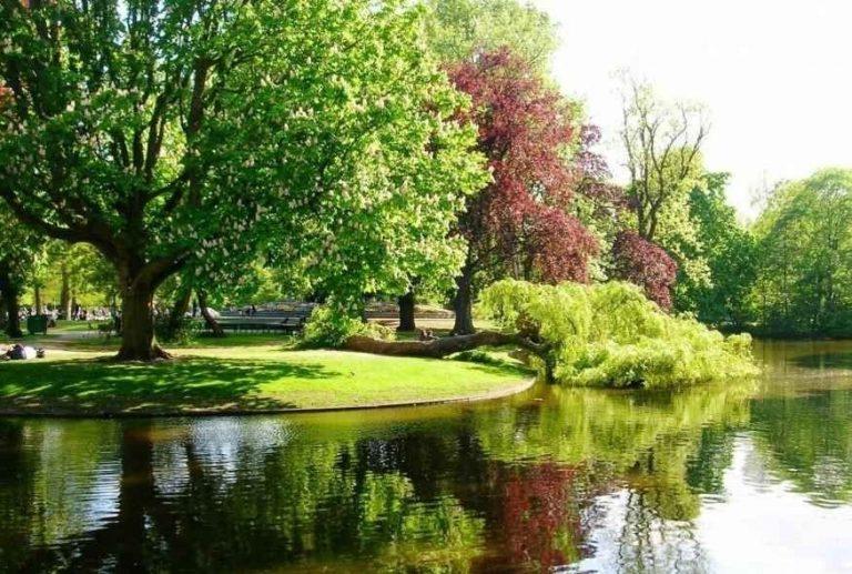 حديقة فوندل