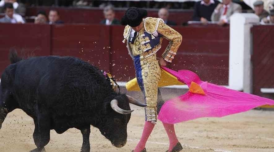 مصارعة الثيران في إسبانياBullfighting in Spain