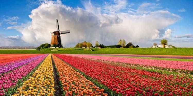 مدن هولندا الريفية من الريف الهولندي