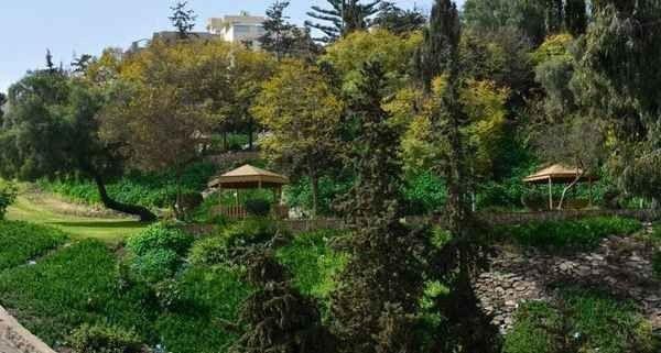منتزه أبو خيال أبهاAbu Kheyal Park Abha
