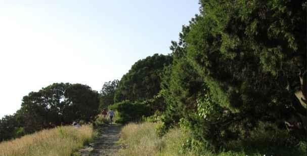 منتزه عسير الوطنيAsir National Park