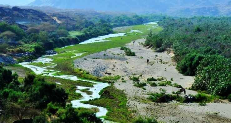 وادي حلي Heli Valley
