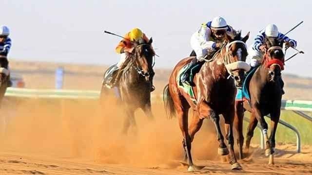 ميدان الفروسية في بريدةThe Equestrian Field Of Buraidah