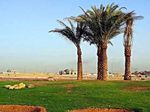 حديقة الملقى Al Malqa Garden