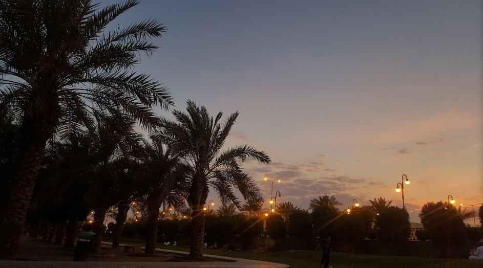 منتزه الروضةRawdah Park