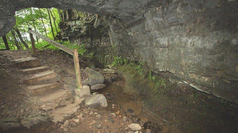 كهف بيل ويتشBell Witch Cave