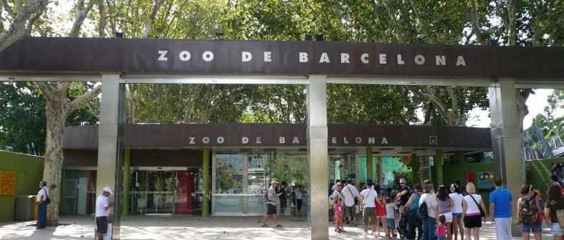 الأماكن السياحية المناسبة لأطفالك في برشلونة .. متعة لك و لأطفالك
