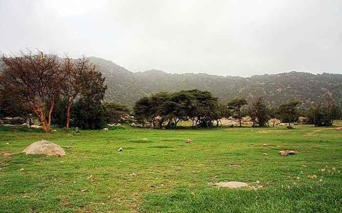 منتزه الحرابي بخميس مشيطAl Haraby Park