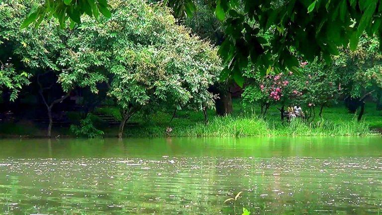 Botanical Gardens -الحدائق النباتية