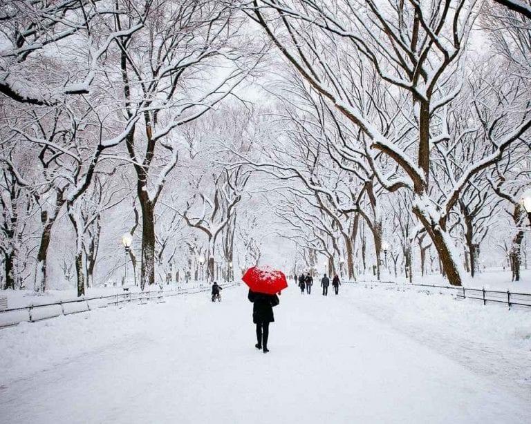 أفضل الأوقات لزيارة نيويورك - نصائح السفر إلى نيويورك