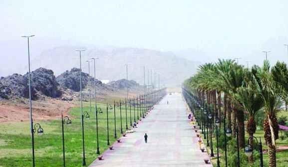 منتزه الأمير سعود بن عبد المحسنPrince Saud bin Abdul Mohsin Park