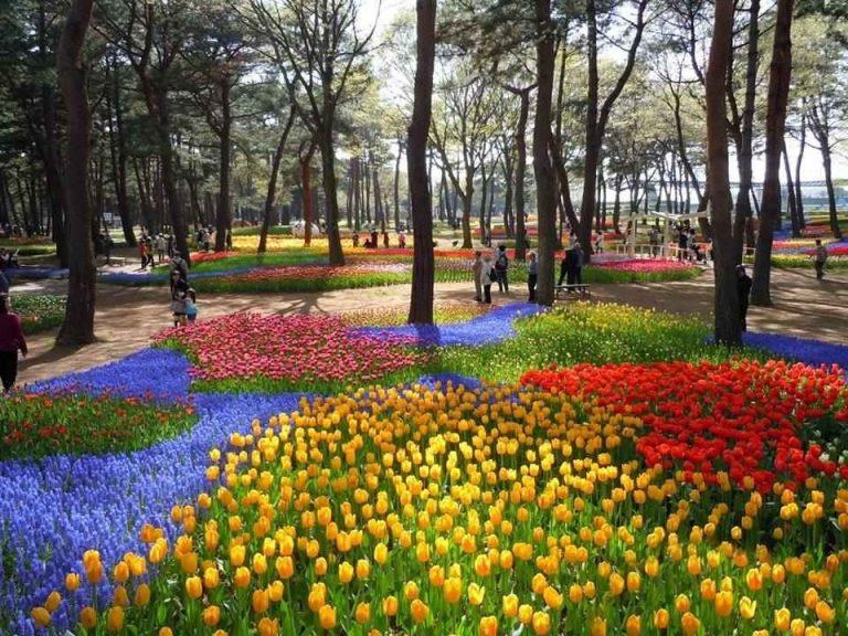 Photo of حدائق اسطنبول الاوربية .. تعرف عليها لقضاء أجمل عطلة مع عائلتك …