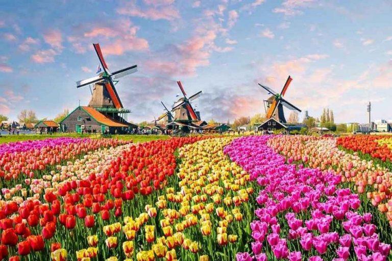 """تكلفة السياحة في هولندا .. """"بلد الورود"""" الأعلى تكلفة بين شيقيقاتها الأوروبيات 2"""
