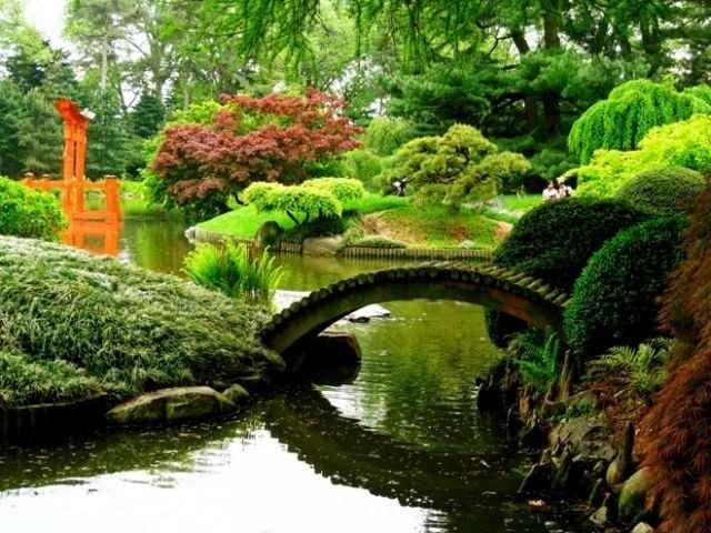 - حديقة النباتات فى نيويورك..