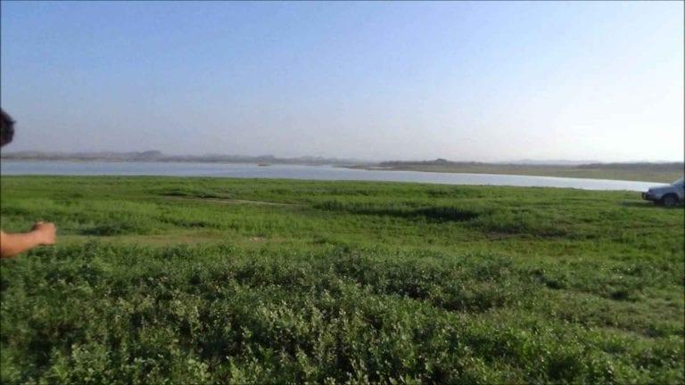 بحيرة السد