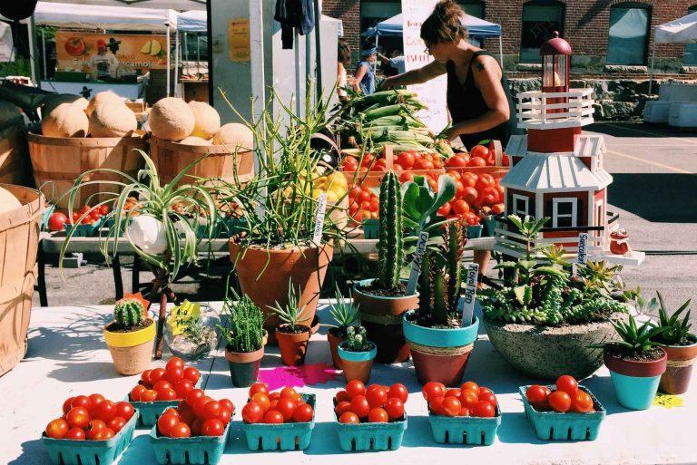 السوق المفتوحة سووا SaWa Open Market