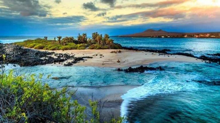 """"""" جزر غالاباغوس Galapagos Islands """" اجمل اماكن السياحة في الاكوادور .."""
