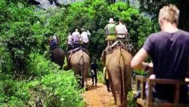 Photo of السياحة في الغابون .. تعرف على أجمل الأماكن السياحية التى تمتاز بها الغابون..