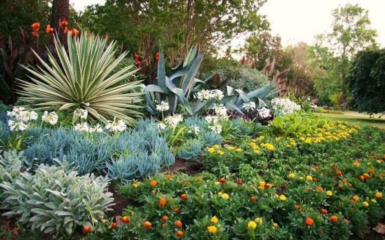""""""" الحدائق النباتية """" .. الاماكن السياحية في تنزانيا .."""