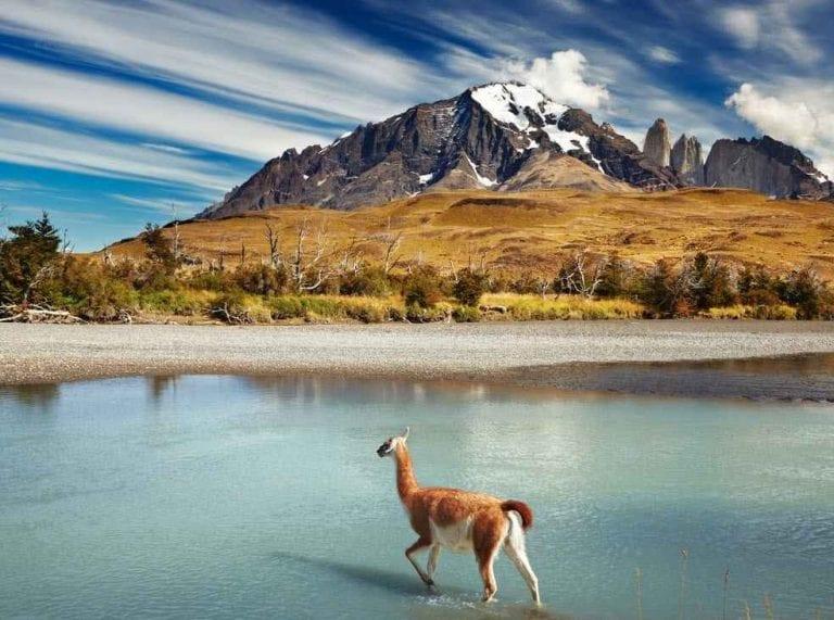 """- جزيرة تشيلووي"""" Chiloé Island""""..واحدة من أجمل الاماكن السياحية في تشيلى..."""