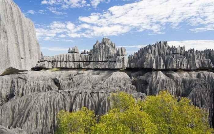 """- لا تفوتك زيارة """"المحمية الطبيعية"""" افضل اماكن السياحة فى مدغشقر.."""