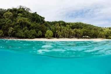 السياحة في فيجي .. جزيرة ساحرة وطبيعة بالقرب من نيوزيلندا 8