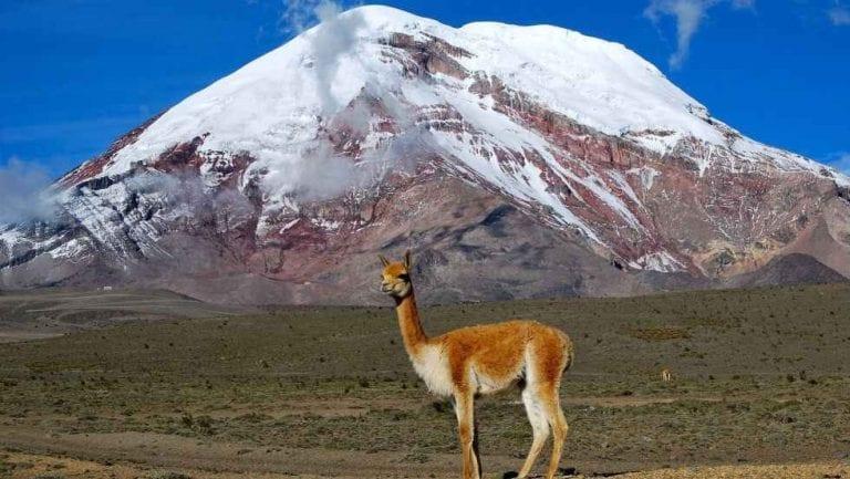 """"""" بركان تشيمبورازو """" .. اهم معالم السياحة في الاكوادور .."""