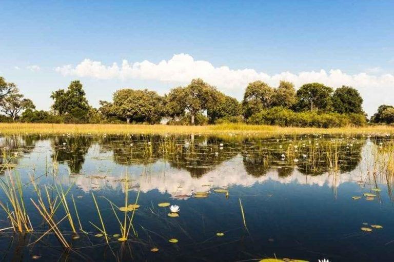 """"""" دلتا أوكافانجو Okavango Delta """" .. اجمل اماكن السياحة في بوتسوانا .."""