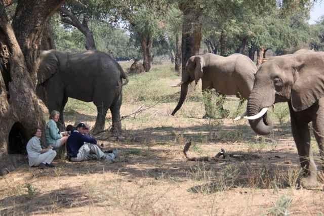 """- الحديقة الوطنية """"مانا بولس برك """".. اجمل اماكن السياحة في زيمبابوى.."""