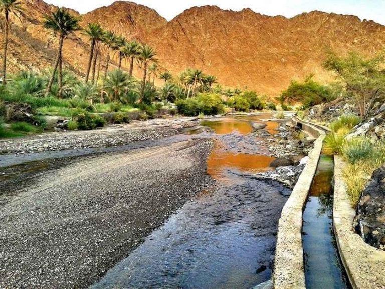 """الاماكن السياحية في الظاهرة .."""" بلدة الوقبة Wajbah Town """" .."""