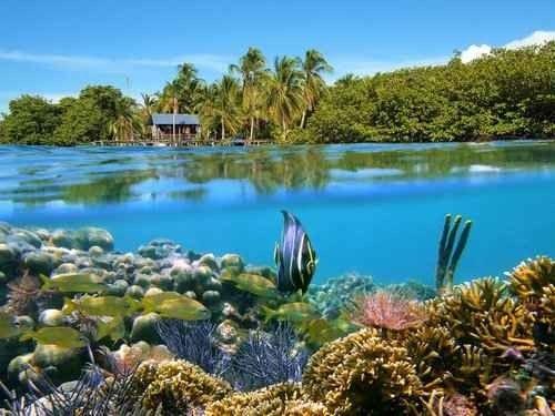 -إليك..أهم المحميات الطبيعية والمتنزهات التى تشتهر بها بنما...