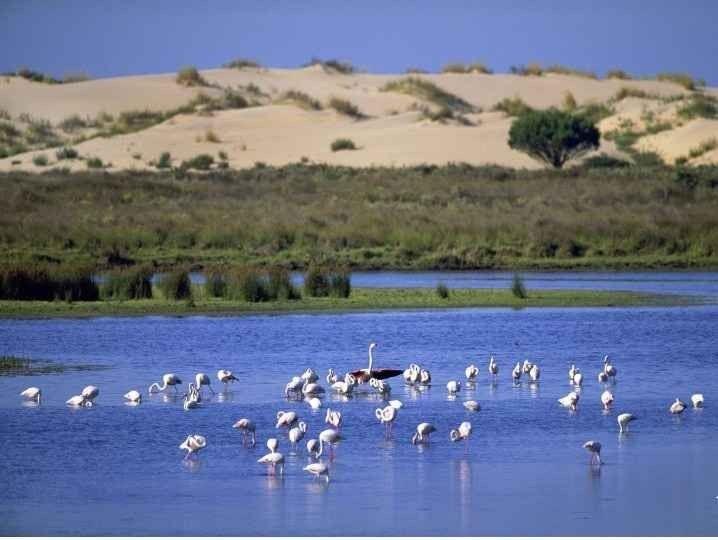 Donna National Park