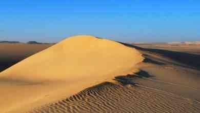Photo of السياحة في الصحراء الغربية .. مكان مثالى لرحلات السفارى.ودليلك لقضاء رحلة مميزة .