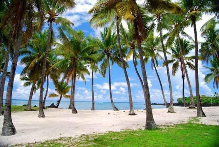تعرف على ..أهم الاماكن السياحية في جزر القمر..