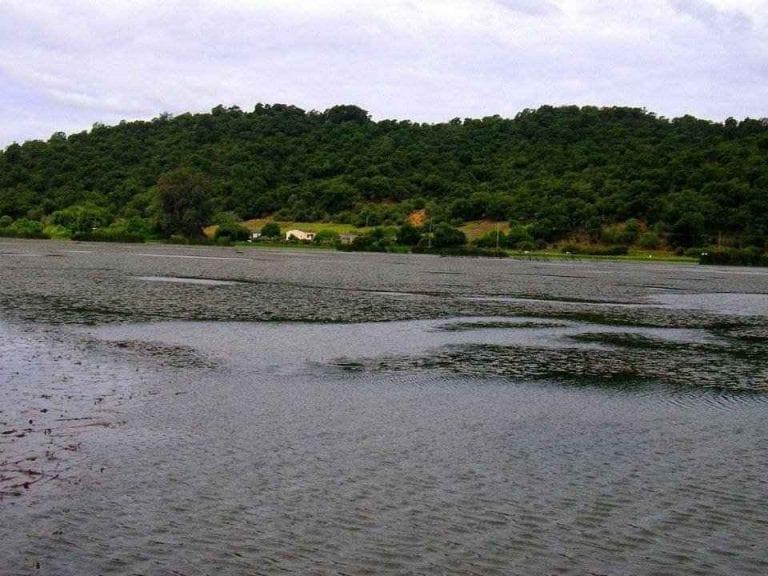 """- بحيرة """"tonga"""" .."""