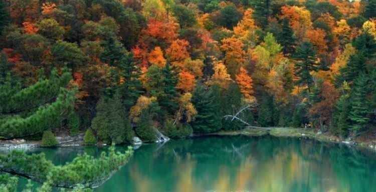 """- تمتع بالطبيعة الخلابة فى حديقة """"غاتينو أوتاوا""""..."""