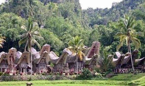 """"""" قرية توكوا The village of Tokawa """" .. افضل اماكن السياحة في بابوا غينيا الجديدة .."""
