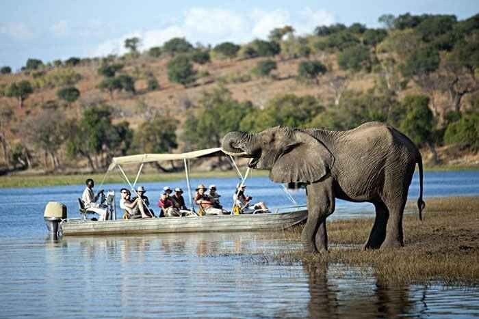 """"""" نهر تشوبى Chobe River """" اهم معالم السياحة في بوتسوانا .."""