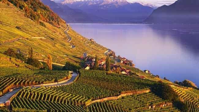 """"""" مدرجات مونترو Montreux Stands """" ..أهم اماكن السياحة في مونترو .."""