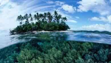 السياحة في بابوا غينيا الجديدة