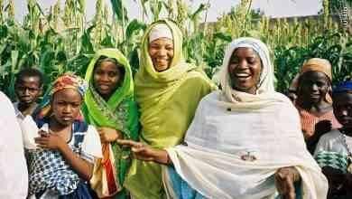 عادات وتقاليد النيجر