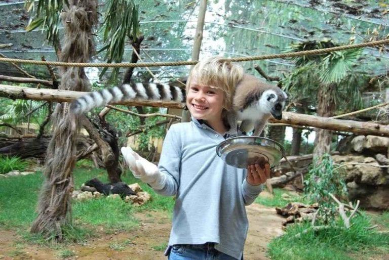 """"""" حديقة حيوانات Krazy World """" .. افضل اماكن السياحة في ألبوفيرا البرتغال .."""