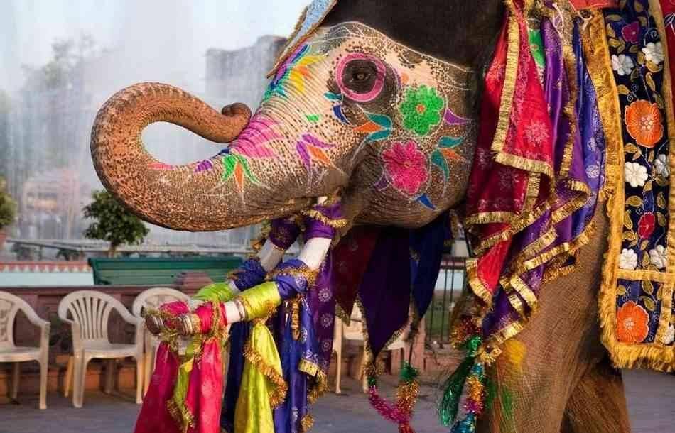 عادات وتقاليد الهند India