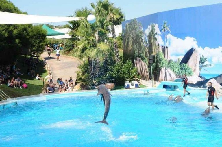 """"""" الحديقة المائية Zoomarine """" .. أهم اماكن السياحة في ألبوفيرا البرتغال .."""