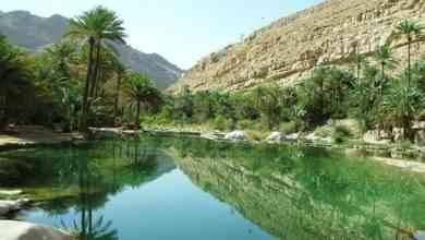Photo of منتزهات في صلالة.. 12 منتزه لا تفوت فرصة زيارتهم والتمتع بالطبيعة الخلابة