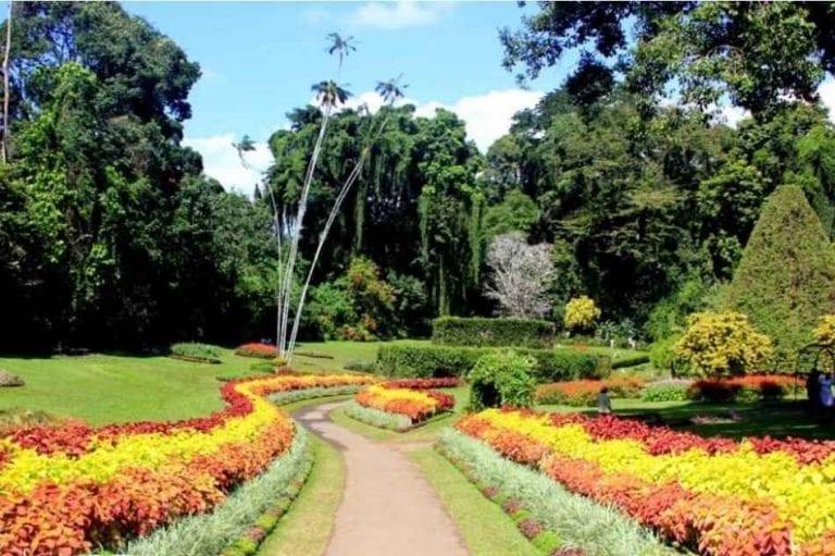 حديقة الزهور - منتزهات في سريلانكا Sri Lanka