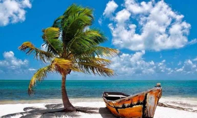 شواطئ فلوريدا